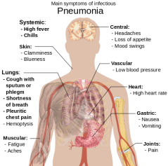 485px-Symptoms_of_pneumonia.svg