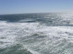 just-ocean